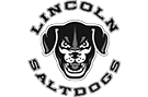 Saltdogs Baseball